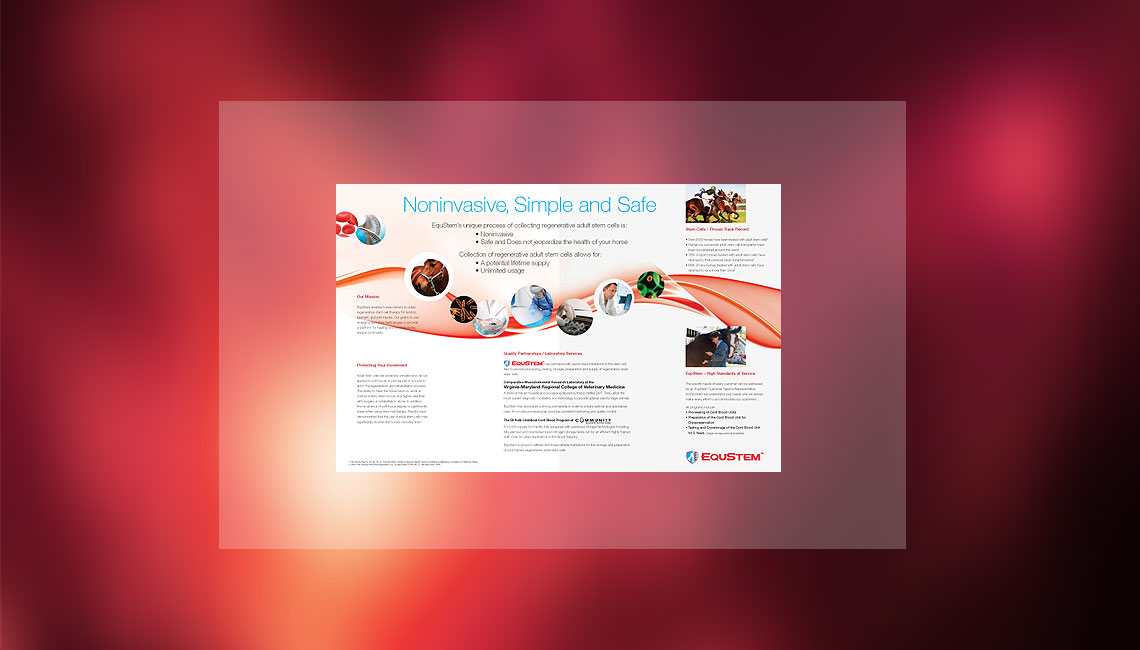 EquStem-brochure2